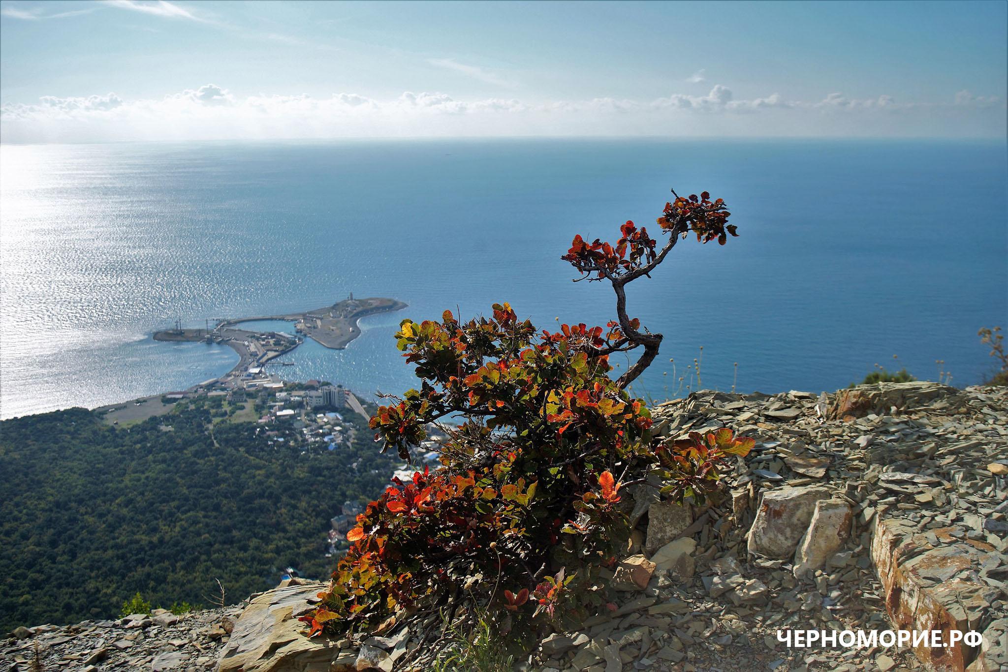 Вид с горы на море, Большой Утриш