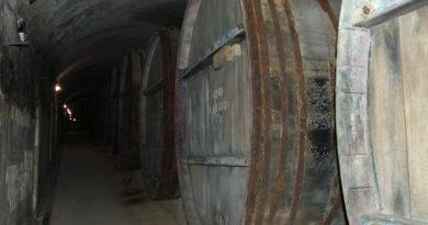 Винные бочки на заводе Саук-Дере
