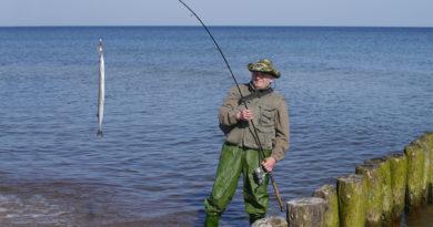 Ловля саргана в Чёрном море