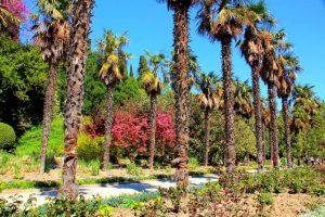 Тест: Что о Никитском саде вы знаете?