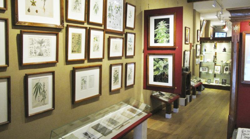 Экскурсия в музей наркотиков в Амстердаме
